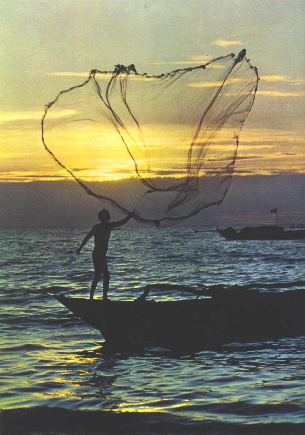 Import Export: A Fishing Net